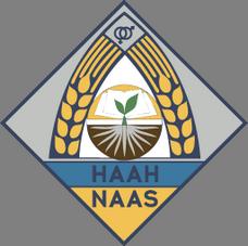 logo наан